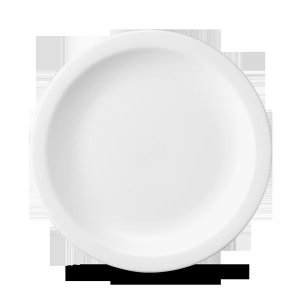 """White Nova Plate 10"""" 24/box"""
